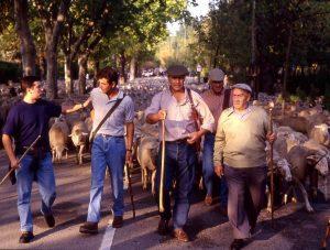 ENTRANDO A MADRID 1994 1