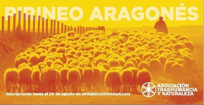 FERIA PASTOREO 12 15 copia