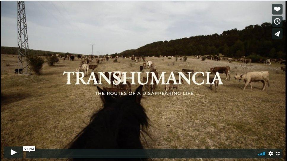 TRASHUMANCIA TRAILER