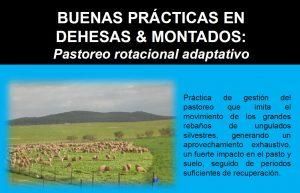 BUENAS PRACTICAS 1