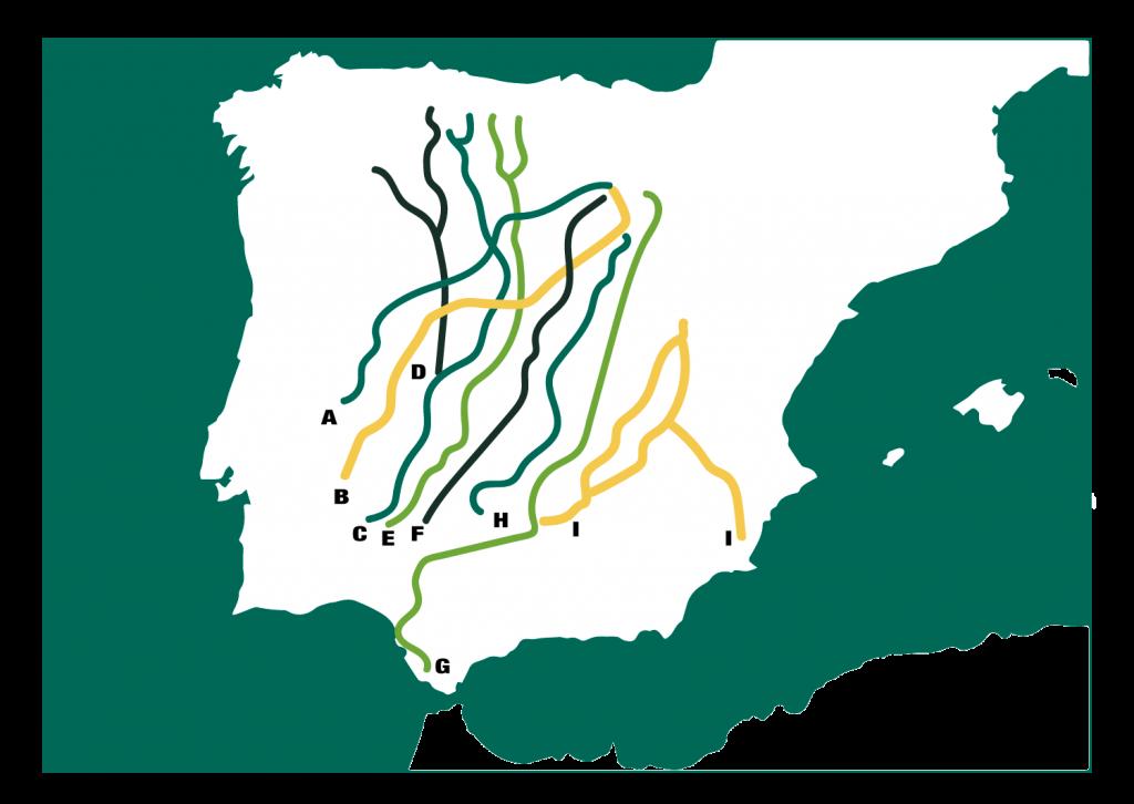 mapa vias pecuarias trashumancia y naturaleza 1