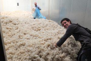 La lana y los ODS