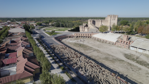 Rebaño Castillo de Coca (Segovia)